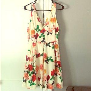 NWT BBDakota Dress